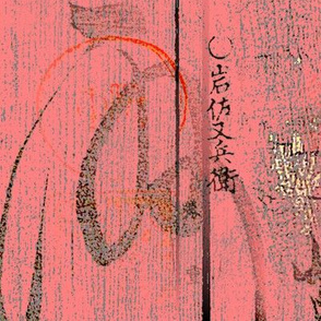 Coral Kanji Textured