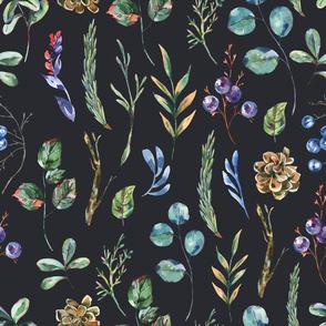 Black forest plants