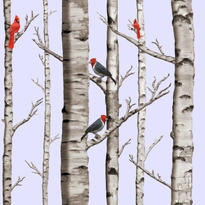 White Birch Trees Red Cardinals