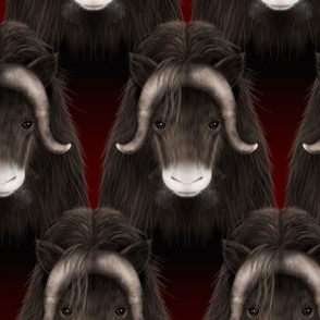 Year-of-the-MuskOx