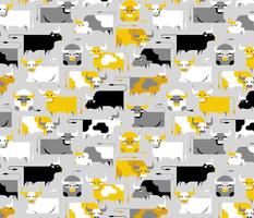 yellow gray oxen