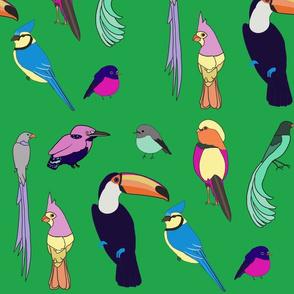Birds - Green