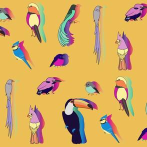 Rainbow Bird Shadows - Yellow