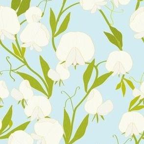 White Sweet Pea Garden