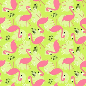 Flamingoes on Green