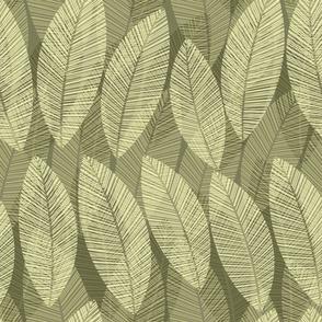 leaf-sage_green