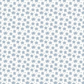 blue stars copy