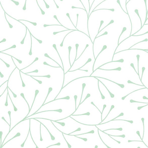 mint branches on white