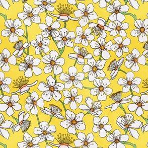 Cherry Blossom - Yellow