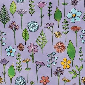 Wildflowers - Heather