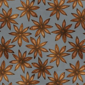 Star Anise - (Pumpkin Spice Collection)
