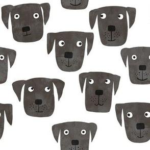 Black Labrador Retriever Dogs Small