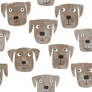 Chocolate Labrador Retriever Dogs