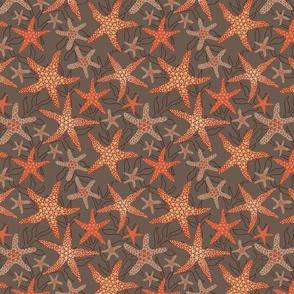 starfish pattern design on brown