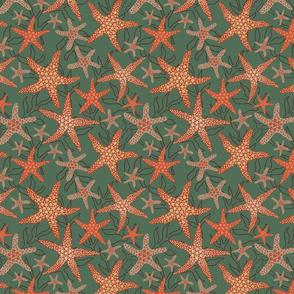 starfish pattern design on green
