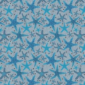 starfish pattern blue on grey