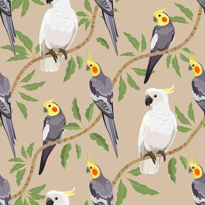 Cockatiel and Cockatoo diagonal pattern