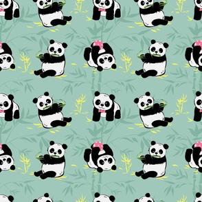 Baby pandas fun
