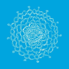 Bright Blue Chrysanthemum
