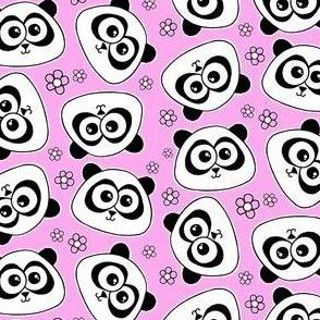 Cute Panda - on baby pink