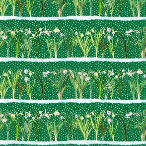 Green snowdrops border