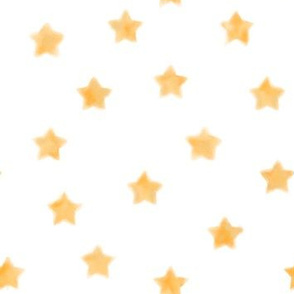 Our Lady of Lourdes Watercolor Stars on White