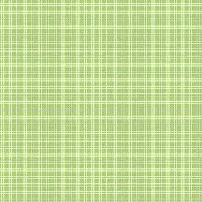 Ice Cream Social :: Rainbow Sherbet :: Green :: Check