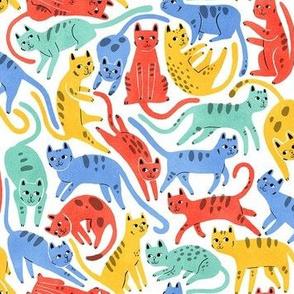 Catscatscats primary