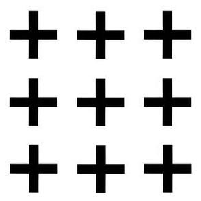 Crossed Paths- B + W