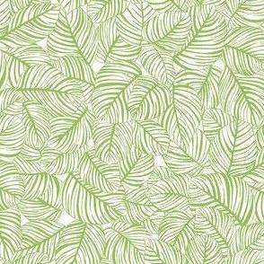 Outline leaf