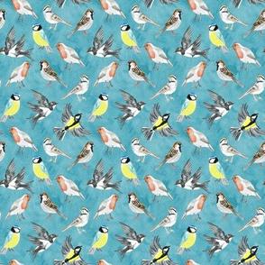 Illustrated Birds on Sky Blue - Tiny