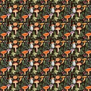 4 x 3.5 inches Mushrooms mix_dark
