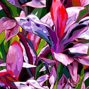 smaller-PurpleRed ti leaf jungle
