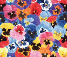 Pansies pattern tile