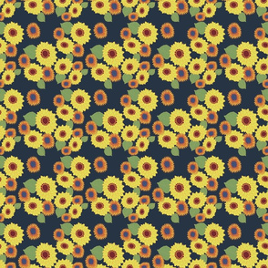 sunflower-02
