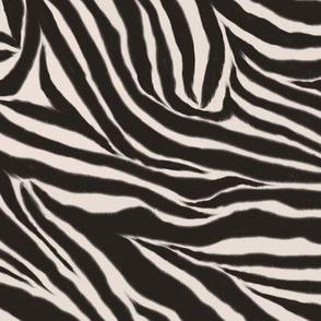 Natural Zebra