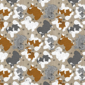 Trotting assorted Havanese and paw prints - faux linen