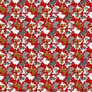 Tiny Trotting assorted Havanese and paw prints - red