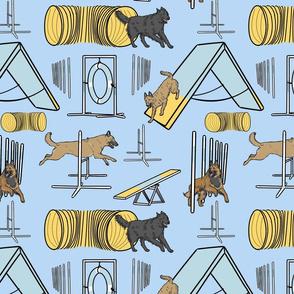 Simple assorted Belgian Shepherd agility dogs - blue