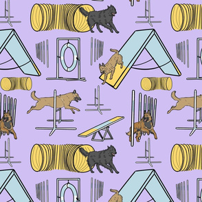 Simple assorted Belgian Shepherd agility dogs - purple