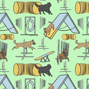 Simple assorted Belgian Shepherd agility dogs - green