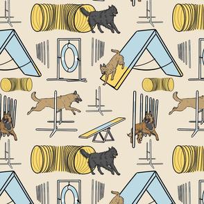 Simple assorted Belgian Shepherd agility dogs - tan