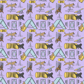 Small Simple assorted Belgian Shepherd agility dogs - purple