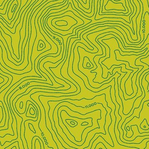 Topographic Map [Green]
