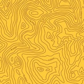 Topographic Map [Tan]