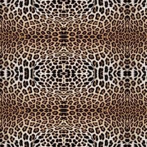 Leopard Print - Debra Cortese Designs