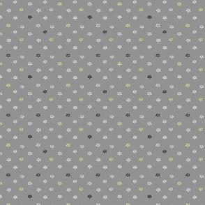 Grey Field