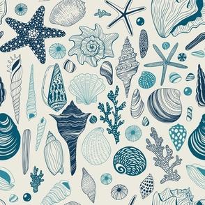 Seashells on off white