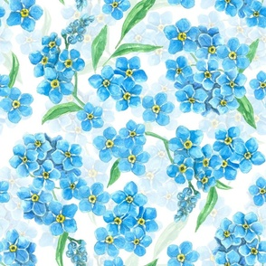Forget me not watercolor flowers on white