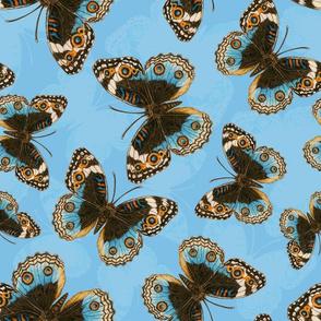 Blue Pansy Butterfly pattern on blue